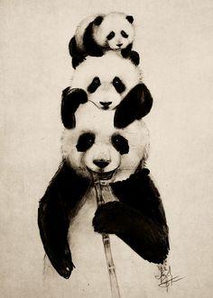 Panda art Isaiah K. Stephens