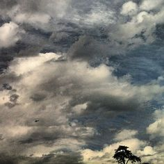 #thebird #chopper #helicopter #la #sky #clouds