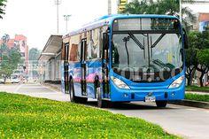 El 1 de noviembre estarán circulando por las calles de Cali los 860 buses del MÍO que están adquiridos y matriculados, para cubrir con eficiencia las 92 rutas del sistema. Así lo afirmaron los cuatro operadores del sistema de transporte masivo de la capital del Valle del Cauca.