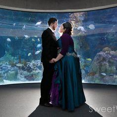 Danielle & Tony's sharks and dragons aquarium wedding