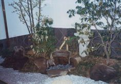寺院庫裡の庭 My Works, My Design, Gallery, Plants, Roof Rack, Flora, Plant
