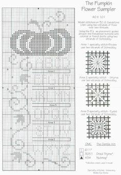 The Pumpkin Flower Sampler Fall Cross Stitch, Cross Stitch Needles, Cross Stitch Heart, Cross Stitch Alphabet, Cross Stitch Samplers, Cross Stitching, Cross Stitch Embroidery, Embroidery Patterns, Lizzie Kate