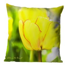 Sofakissen, Tuch oder Leinwandbild Tulpe Beauty of Spring