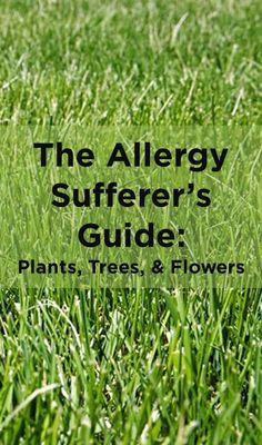 Everything is in full bloom...including your allergies. Here are some tips to enjoy the outdoors without being miserable.