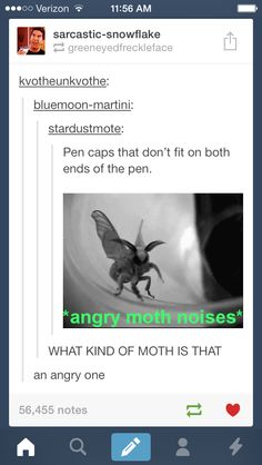 The King of Moths, obviously.
