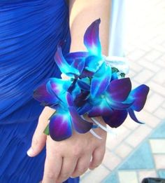 Blue Orchid Wedding Bridal Court Flowers: Blue Orchid Corsage...maybe these instead of bouquets for the maids?
