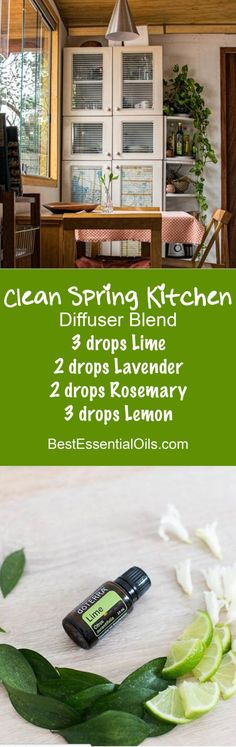 Become a dōTERRA WELLNESS Advocate or just buy as a Wholesale Member Clean Spring Kitchen doTERRA Diffuser Blend