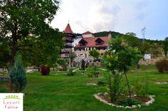 In ultimii 10 ani, turismul s-a dezvoltat semnificativ in Romania, dar abordarea tematica are inca numeroase lacune, putine fiind locurile ce spun o poveste. Astfel, cu atat mai mare ne-a fost bucuria cand am descoperit Castelul Lupilor din judetul Hunedoara, un loc deosebit, construit in jurul unui castel ce dainuie din 1856. Romania, Mansions, House Styles, Home Decor, Houses, Shelf, Mansion Houses, Homemade Home Decor, Manor Houses
