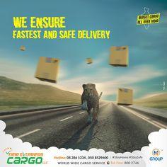 Cargo Services, Stay Safe, Budgeting, World, Budget Organization, The World