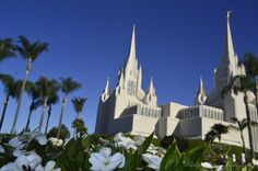 Mormon Church in La Jolla San Diego California USA (Oct 2017) Flowers White vs White Palmtree Blue Sky