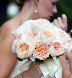 WEDDING EVENT: DAVID AUSTIN ROSES