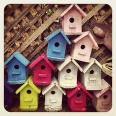 Colorful bird houses In the street. Fredericksburg,Texas
