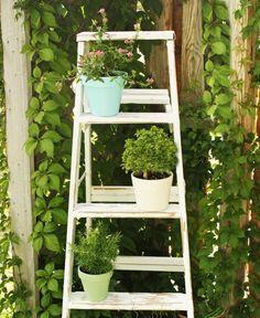 Blumenständer selber bauen - Alte Holzleiter als Blumenleiter ...