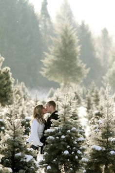 engagement photo christmas tree shopping...If I don't get engaged during Christmas my fiance and I will have some serious issues