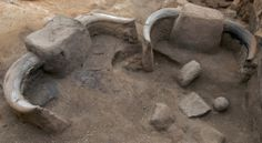 Horns - a detail of Building 77 in the 4040 area of Çatalhöyük