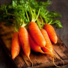 Shop for Carrot seeds by the Packet or by the Pound.Com offers Hundreds of Seed Varieties, Including the Finest and Freshest Vegetable and Herb Seeds Anywhere. How To Plant Carrots, Growing Carrots, Succession Planting, Carrot Top, Carrot Seeds, Herb Seeds, Fresh Vegetables, Veggies, Seed Packets