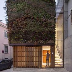 House in Travessa do Patrocinio by Luis Rebelo de Andrade
