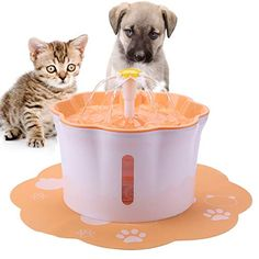 iFCOW Pet Cat Water Fountain Ultra-Quiet Hygienic Replaceable Filter Waterfall Pet Water Dispenser Automatic Drinking Fountain for Dog Small Animals Small Animals, Small Dogs, Cute Animals, Cat Water Fountain, Drinking Fountain, Resin Material, Water Dispenser, Plastic Laundry Basket, Pet Supplies