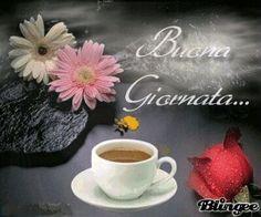 Buon Giorno