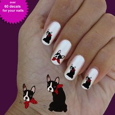 Boston terrier, nail art, nail decal, set of 60 waterslide nail decal  #dog0012