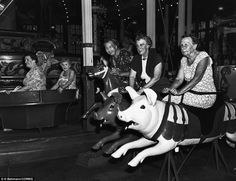 Young at heart: A group of grandmothers rides the pigs on a carousel at Steeplechase Park, Coney Island; they call themselves the Grandmas' Night Out Club