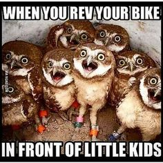Bike Quotes Laughing 19 Ideas For 2019 Crazy Funny Memes, Really Funny Memes, Funny Relatable Memes, Haha Funny, Hilarious, Funny Stuff, Easy Rider, Motocross Funny, Motocross Quotes