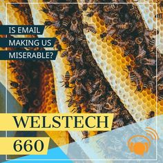 The WELSTech book discussion of A World Without Email by Cal Newport continues this week with chapters 2 & 3. Martin is excited about a new bookmark manager that ends a multi-year search for a suitable tool. And Sallie is off in space maintaining the stations.