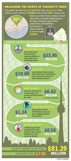 #NATURE #SWD #GREEN2STAY Why you should know how much the tree on your lawn is worth - The Globe and Mail