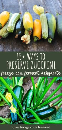 Cold Summer Dinners, Easy Summer Meals, Preserving Zucchini, Preserving Food, Canning Squash, Freezing Squash, Canning Food Preservation, Canning Vegetables, Refreshing Summer Cocktails