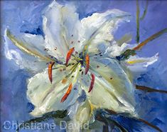 0601182 White Iris by Christiane David Oil ~ 11 x 14 Contemporary Abstract Art, Modern Art, Lily Painting, Shabby Chic Flowers, White Lilies, Classical Art, Flower Photos, Painting Inspiration, Flower Art