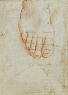 ♔ ART: Academic drawing / Leonardo da Vinci