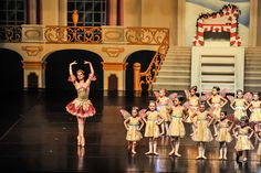 Blue Grass Youth Ballet   Backdrop (ES7307) Palace interior with cut door