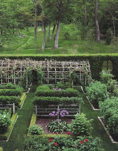 trellis, ordered, kitchen garden - where Alice and Peg steal a visit
