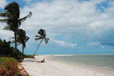 Ilha de Itamaracá, Coroa do Avião, PE, Brazil