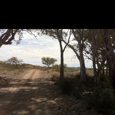 Outback Australia ,shadows in an oasis