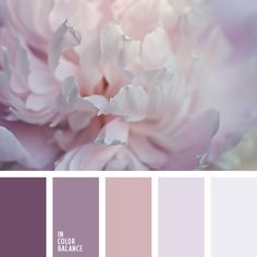 Pale shades of pink, lilac, brown and gray will perfectly fit the interior design in the room of a young amorous girl. Such gamma will underline that she i. Best Picture For wedding color palette purp Colour Pallette, Colour Schemes, Color Combos, Purple Palette, Silver Color Palette, Pastel Palette, Color Trends, Color Patterns, Wedding Themes