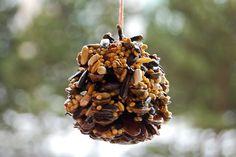 Také jste si s dětmi povídali, jak na tom jsou v zimě sýkorky a ostatní ptáčci, co u nás přezimují? Co kdybyste jim vyrobili jednoduché krmítko ze šišky? Děti snadno zabavíte a uvidíte, že jim brzy přibudou noví ptačí kamarádi! jQuery(document).ready(function($) { $.post('htt…