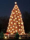 National Christmas Tree and the Pageant of Peace 2013