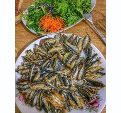 #fish #eat