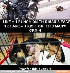 Drag the SOB just the same way that poor baby was. Damn hateful people!!!