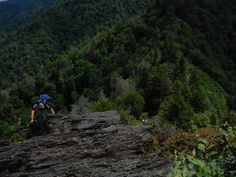 The last push to the summit of Chimney Tops is not for the faint of heart. - Hiking in the Smokey Mountains
