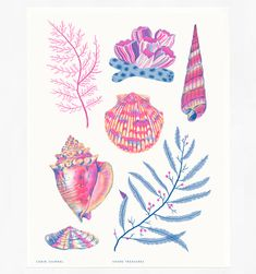 Shore Treasures risograph print by Cabin Journal Painting Inspiration, Art Inspo, Shell Drawing, Mermaid Art, Mermaid Paintings, Vintage Mermaid, Sea Art, Art Reference, Watercolor Art