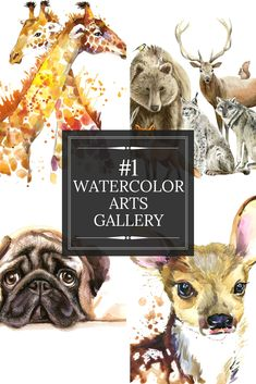 24 Perfect Watercolor Arts Collections - Search On Secrets And Information Regarding Watercolor Arts Right Now!
