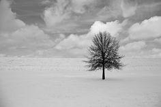 Paul Seibert Photography
