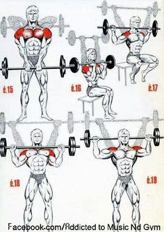 Lean Muscle Fast - 8 Foolproof Tips For Quick Muscle Grow The Fitness era: BEAST shoulder workout!The Fitness era: BEAST shoulder workout! Muscle Fitness, Mens Fitness, Woman Fitness, Fitness Style, Health Fitness, Weight Training, Weight Lifting, Training Tips, Fitness Workouts