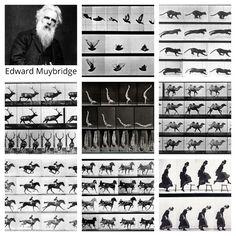 Edward Muybridge, Langford Basic Photography