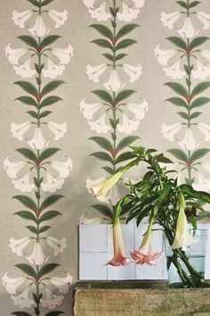 Angel's Trumpet by Cole & Son - Chalk & Sage on Stone - Wallpaper : Wallpaper Direct Marimekko Wallpaper, Fabric Wallpaper, Designers Guild Wallpaper, Designer Wallpaper, Harlequin Wallpaper, Morris Wallpapers, Cole And Son Wallpaper, Angel Trumpet, Stone Wallpaper