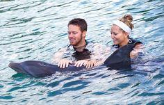 Dolphin Swim from Montego Bay