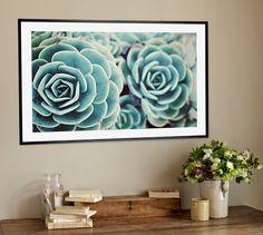 Sedum Plant Framed Print by Lupen Grainne   Pottery Barn