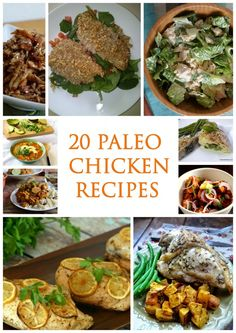 20 Paleo Chicken Recipes http://www.paleozonerecipes.com/paleo-dinner-recipes/20-paleo-chicken-recipes/ #paleo #recipes #glutenfree